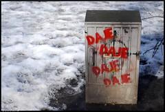Daje, Daje, Daje! (David Corral-Abad) Tags: street calle strasse poland polska krakow polen rua rue polonia cracovia planty krakau ulica krakoff daje nikond80