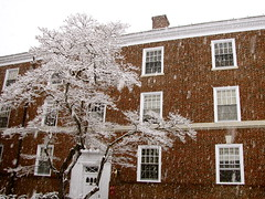 Brown College; Winter (K.G.Hawes) Tags: winter brown snow cold building tree brick college weather virginia university dorm creative commons cc creativecommons snowing dormitory uva residential