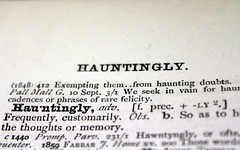 Hauntingly (quinn.anya) Tags: memory definition haunting dictionary haunt frequently adverb hauntingly