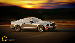 Shelby GT500 | The Rise of Cobra (Tareq Abuhajjaj | Photography & Design) Tags: tareq tareqdesign tareqdesigncom shelby gt500 | the rise cobtareq cobra white نيكون مصور مصمم طارق ابوحجاج أبوحجاج top tareqmoon nice moon ksa high gear flickr fast design photography power red rims riyadh saudi speed sport photo nikon d700 car black arabia abuhajjaj 2010 cars dark orange yellow night bw turbo manual فراري فوتوغرافي قوة سلندر سرعه رياضية تصوير تصميم ايطاليا الرياض السعودية v8 wheels race sky big fiber lights light carbon worldcars