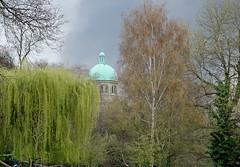 St Joseph's from Waterlow Park (DncnH) Tags: park trees london church spring catholic monastery willow stjosephs dome highgate highgatehill romancatholic northlondon n6 waterlowpark holyjoes passionist stjosephshighgate