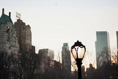 Dusk (daniellih) Tags: park street new york city nyc newyorkcity trees light sky urban newyork building tree lamp plane buildings airplane evening march streetlight downtown cityscape afternoon dusk streetlamp centralpark branches central scape urbanscape 2012 modernlandscape daniellih