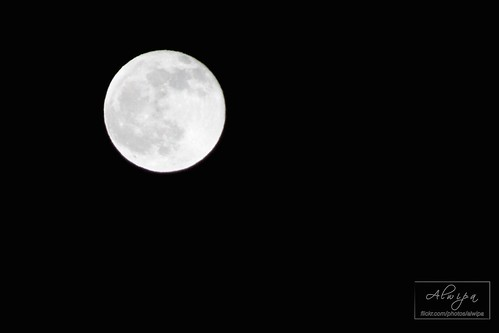 """The moon • <a style=""""font-size:0.8em;"""" href=""""http://www.flickr.com/photos/104879414@N07/13893139203/"""" target=""""_blank"""">View on Flickr</a>"""