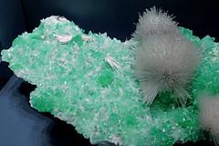 Mesolite with Apophyllite (Asbestorama) Tags: rock stone smithsonian dc washington crystal needle mineral geology needles gem specimen fibers geological fibrous notasbestos