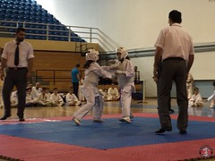 stefanou_15_5_2016_knockdown_209