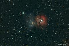 m 20 trifid nebula (fabio palleze Altazimuth Astrophotography) Tags: canon nebula astrophotography astrofotografia astronomy celestron m20 trifid