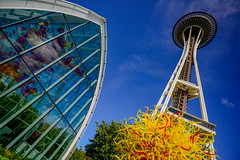 Chihuly Garden and Space Needle - Seattle (Aleem Yousaf) Tags: sky chihuly glass clouds garden photo nikon outdoor walk space centre needle architcture seatle d800 1835mm