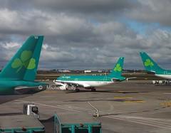 Aer Lingus                           Airbus A320                              EI-DEG (Flame1958) Tags: travel ireland vacation holiday flying airbus dub aerlingus a320 320 dublinairport 2016 0416 airbusa320 eidw eideg aerlingusa320 290416