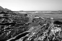 Little Pool, Big Ocean (Richie Rue) Tags: ocean uk sea england blackandwhite monochrome strand landscape mono rocks cornwall atlantic seashore trebarwith rockpools nikond300