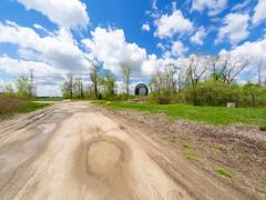 _5132032 (elsuperbob) Tags: monument giant michigan detroit tire ferriswheel americana roadside roadsideamerica worldsfair 1964 motorcity carculture uniroyal allenpark