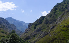 Green valleys (rimerbl) Tags: leica espaa mountains green spain mountainside picosdeeuropa leicadlux6 dlux6