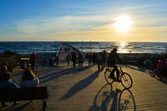 Evening in Palanga (lisoidkotov) Tags: sunset sea evening pier lithuania  palanga  baltika