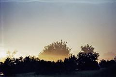 Feel! (AirSonka) Tags: sky film nature analog 35mm outside lomo doubleexposure toycamera multipleexposure analogue summerevening smena eveninglight smena8m doubleexposed pelcula filmphotography pellicule kodakgold200 airsonka doppelbelichtung soniakaniss