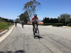 IMG_6886 (younggtx) Tags: david cycling ken victor terri teresa pv palosverdes fathersdayride