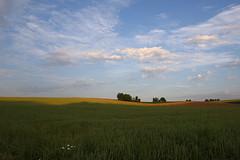early morning light (Xtraphoto) Tags: morning trees light sky field clouds landscape early felder himmel wolken frh morgenlicht sonnenlicht