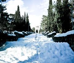 Partizan memorial