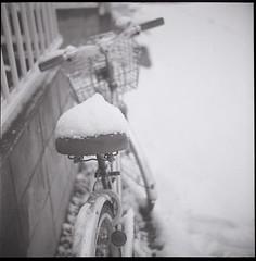 0685 (nori 4_4) Tags: bw snow 6x6 tlr film monochrome bike japan kodak trix 11 d76 squareformat yokohama analogphotography selfdevelopment ricohflexviim 2012winter anastigmat8035