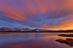 Eastern Sierra Photowalk Coming in Early June (Jeffrey Sullivan) Tags: california copyright usa jeff nature canon landscape photo nevada sierra sullivan eastern photgraphy 2010 5dmarkii