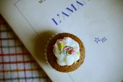 L'amant #2 (miss_mixtape) Tags: sunday libri cupcake duras lamante lamant