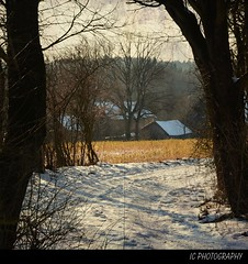 on the Countryside (H. Eisenreich) Tags: schnee trees winter light snow texture bayern bavaria prime licht photo ic foto fotografie farm hans award heike landschaft bäume bauernhof 2012 oberpfalz weg reise reisefotografie poststrasse landschaftsfotografie schmidmühlen eisenreich reisefoto eijomian landschftsfoto