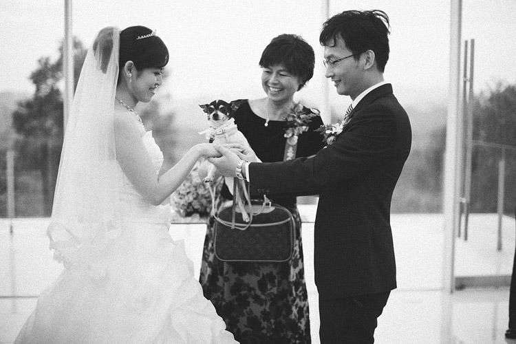 心之芳庭,婚禮攝影,底片婚攝,餐廳,台中婚攝推薦,台中婚攝,台中婚禮攝影,婚禮紀錄,婚攝推薦ptt,婚攝推薦,婚禮攝影作品推薦,獨立攝影師