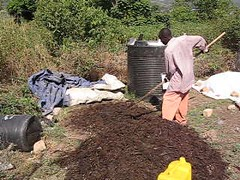Mixing the compost heap manually (video) (Sustainable sanitation) Tags: video mixing uganda kampala composting kakira susandesign