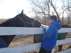 Bonding with the horses