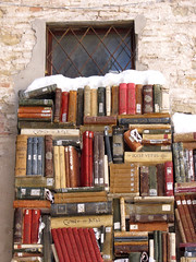 Books in the snow (cepatri55) Tags: snow books libri neve 2012