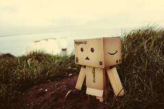 danbo stuck in the mud ((LIVELOVELAUGH)) Tags: sea cute mud cardboard dorset danbo danboard