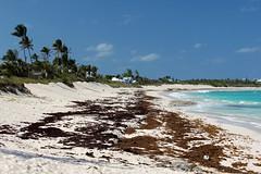 IMG_4843 (MegachromeImages) Tags: copyright beach by hope town d atlantic elbow steven bahamas cay windward thompson 2012