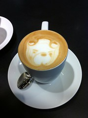 Cappuccino (discorgax) Tags: coffee caf cafe cappuccino caff cafea