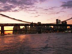 New York(931)