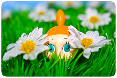 PEEK (Toypincher) Tags: flower grass toy little hide moomin daisy peek hiding moomins peeping mymble my