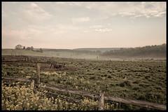 Let the Day Begin (bkcasteel) Tags: morning usa grass canon fence landscape spring pennsylvania farm canon350d canondigitalrebel wildflowers canonxt canoneosdigitalrebelxt allegheny shellsburg bedfordcounty apalachia canonef50mmf18ii topazadjust efs1855mmf3556lens topazbweffects