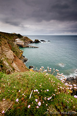 Lizard Point ([[BIOSPHERE]]) Tags: sea landscape coast cornwall thrift lizardpoint seapink