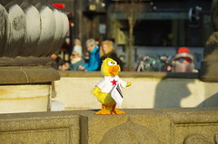 chicken (rotabaga) Tags: gteborg pentax sweden gothenburg sverige k5 jrntorget
