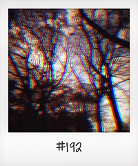 "#DailyPolaroid of 8-4-14 #192 • <a style=""font-size:0.8em;"" href=""http://www.flickr.com/photos/47939785@N05/13904659036/"" target=""_blank"">View on Flickr</a>"