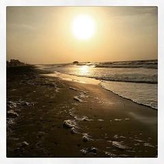 Live in the sunshine, swim in the sea, drink the wild air. - Ralph Waldo Emerson #lifeisgood #galveston http://ift.tt/1YZ7lg9 (the61stpier) Tags: galveston pier fishing dock texas tx 61stpier