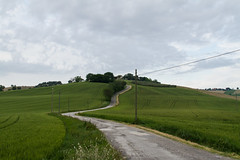 "la strada bianca  #streetphotography morrodalba #marche  #italy #clod #giornatedifotografia #sensi #enricoprada #canon #street #landscape #campagna #country #nature #verde (claudio ""clod"" giuliani) Tags: italy canon clod sensi morrodalba giornatedifotografia enricopradaclodmorrodalbagiornatedifotografiamaggio2016seminarioeclodmorrodalbagiornatedifotografiamaggio2016seminarioenricopradaricordimozartbeethovensensiolfattotattogustouditovistamichelesmargiassialicealisonessenzi"
