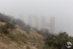 Foggy (neco.w) Tags: usa cloud mist sign misty fog america la los cloudy angeles low hill foggy landmark icon hills hollywood