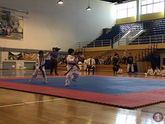 stefanou_15_5_2016_knockdown_9
