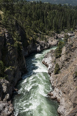 "Yellowstone River • <a style=""font-size:0.8em;"" href=""http://www.flickr.com/photos/63501323@N07/27225656983/"" target=""_blank"">View on Flickr</a>"