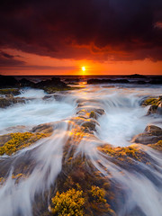 magicalnaturetour June 26, 2016 at 09:00PM (michellelabelle1) Tags: sunset usa seaweed landscape hawaii waves shoreline blowhole slowshutter coastline bigisland kailuakona lavarock puka rightsmanaged christopherjohnson keaholepoint magicalnaturetour
