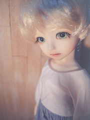Fawn ( Saria) Tags: bjd uri customhouse aidolls aiange
