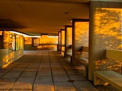 1807 Evening Shadows_Paule Hjertaas (paule48) Tags: sunset arizona usa building architecture evening shadows desert tucson adobe saguaronationalpark