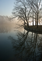 Foggy morning at home (Bill Collins1) Tags: nature waterreflections