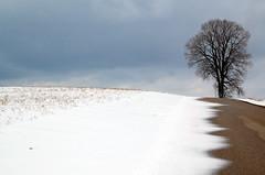 Erbe Road (pchgorman) Tags: trees winter snow wisconsin landscapes february danecounty calendar2013