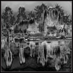 Winter River: Tree Contrast (Tim Noonan) Tags: black white trees river water winter snow ice contrast reflection awardtree magictroll art manipulation shockofthenew sotn vividimagination digitalartscene digitalartscenepro digi tim vivid imagination exoticimage artdigital hypothetical netartii magiktroll sharingart ultramodern