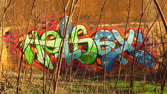 HOTSEX (BLACK VOMIT) Tags: trestle hot sex graffiti virginia bush pillar deep richmond va hotsex