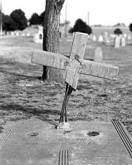 Mount Calvary Cemetery (jonnyphoto) Tags: bw film cemetery albuquerque delta 4x5 100 rodinal chamonix ilford 210mm mountcalvarycemetery 045n2
